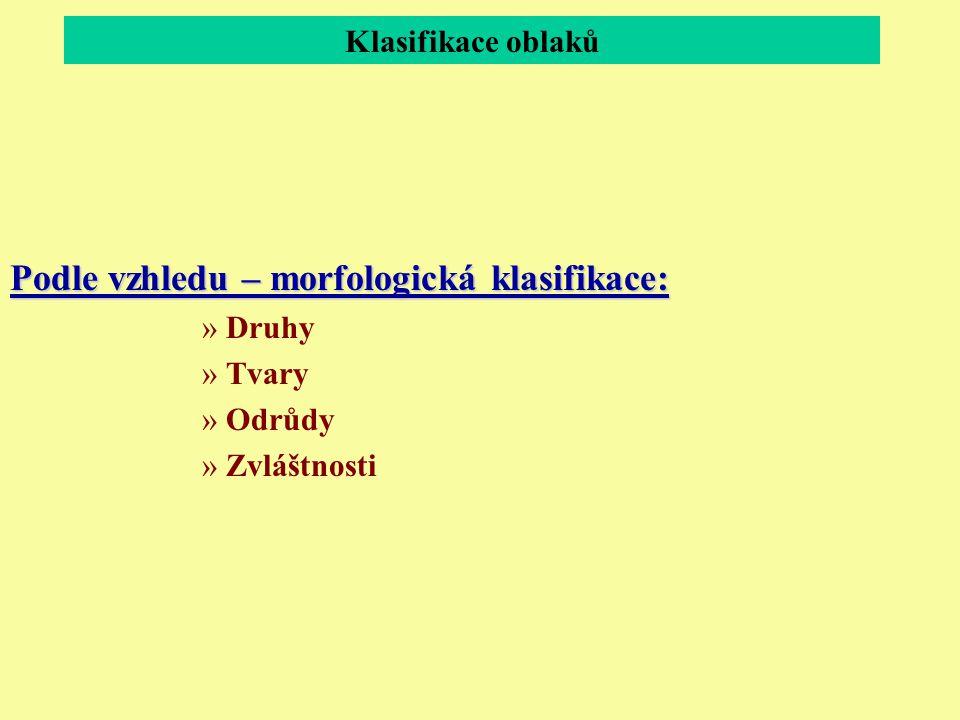 Podle vzhledu – morfologická klasifikace:
