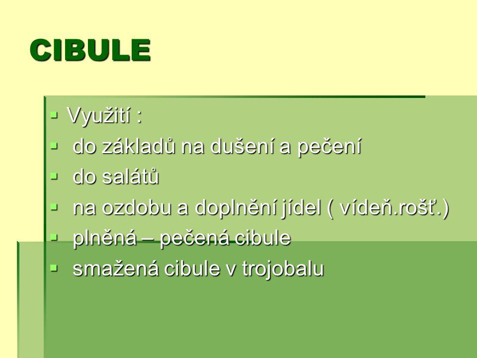 CIBULE Využití : do základů na dušení a pečení do salátů