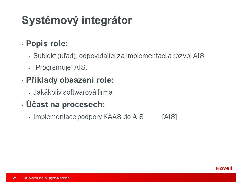 Systémový integrátor Popis role: Příklady obsazení role: