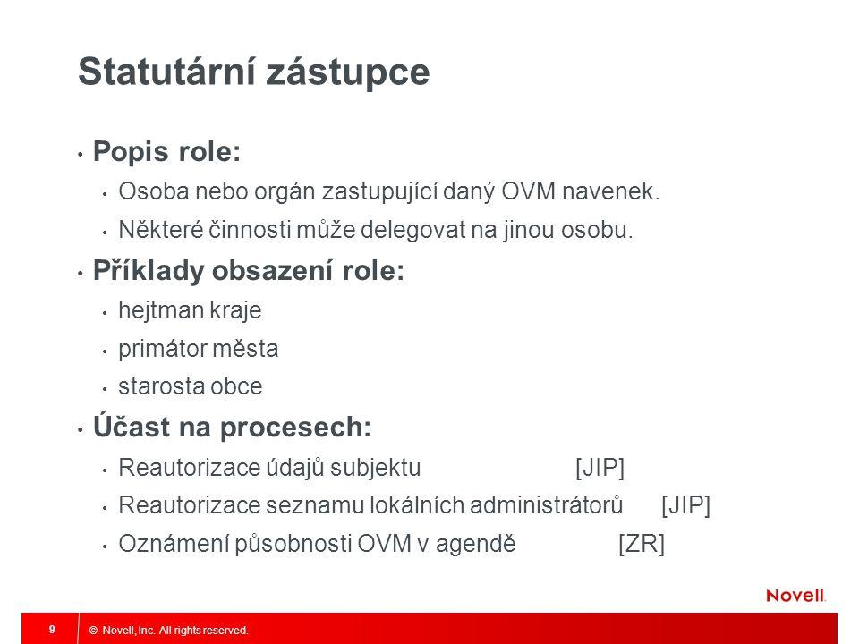 Statutární zástupce Popis role: Příklady obsazení role: