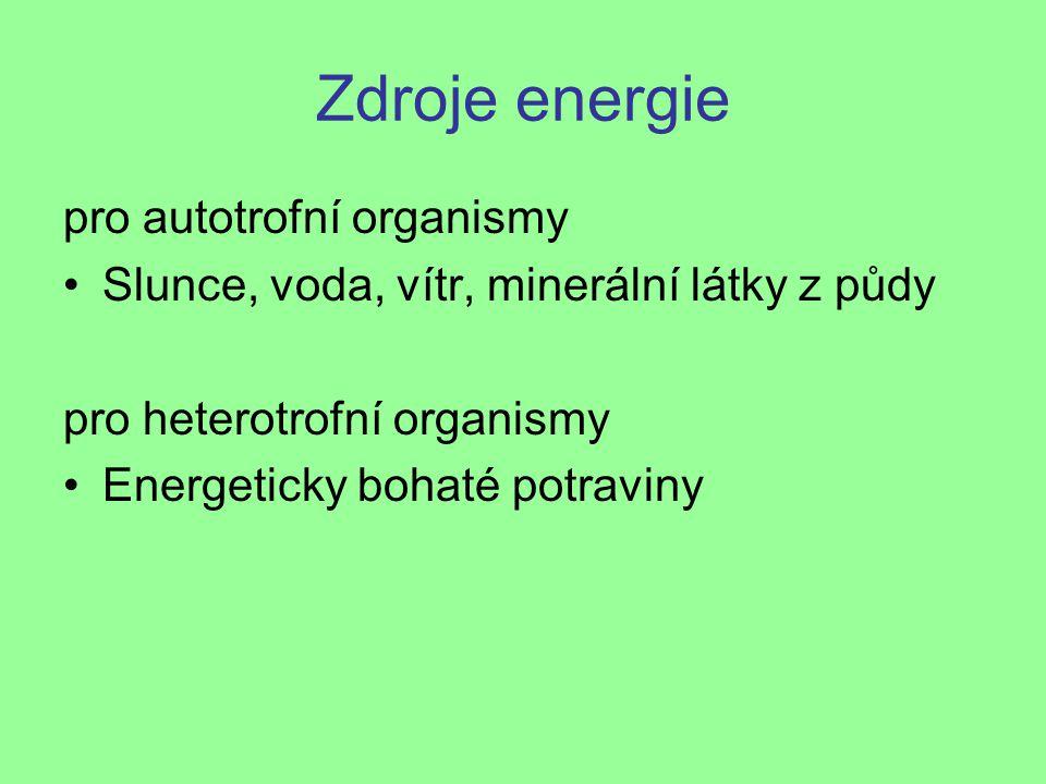 Zdroje energie pro autotrofní organismy
