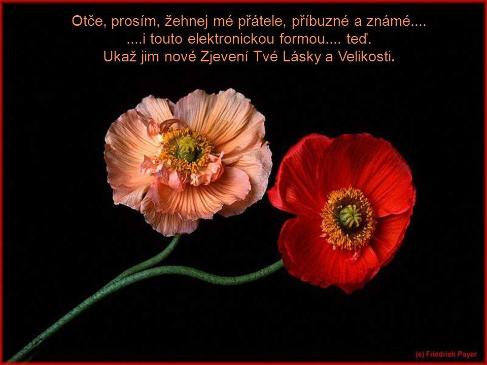 Otče, prosím, žehnej mé přátele, příbuzné a známé....
