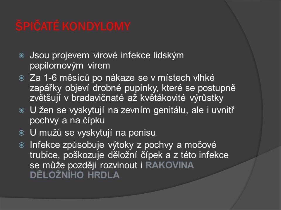 ŠPIČATÉ KONDYLOMY Jsou projevem virové infekce lidským papilomovým virem.