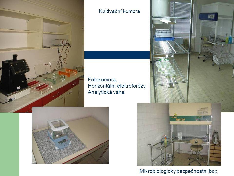 Kultivační komora Fotokomora, Horizontální elekroforézy, Analytická váha.