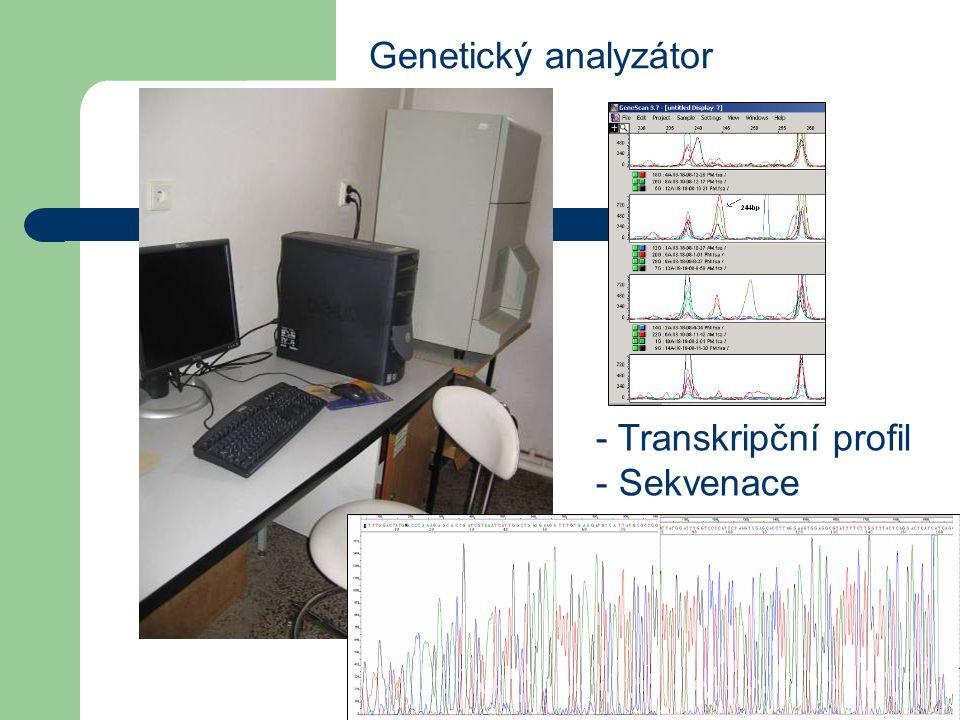 Genetický analyzátor - Transkripční profil - Sekvenace
