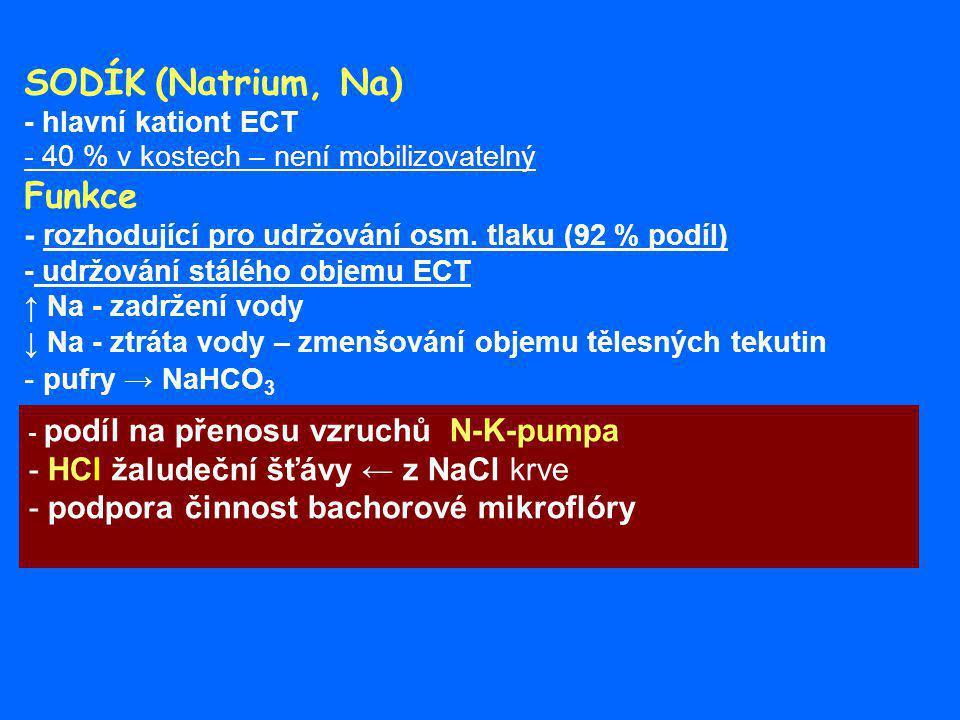 SODÍK (Natrium, Na) Funkce - HCl žaludeční šťávy ← z NaCl krve