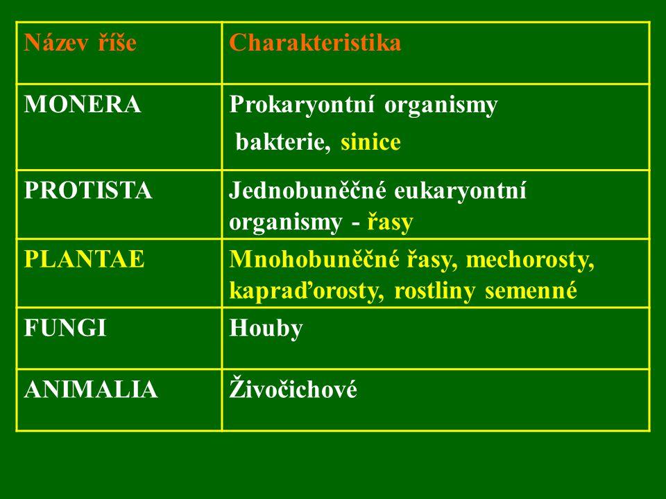 Název říše Charakteristika. MONERA. Prokaryontní organismy. bakterie, sinice. PROTISTA. Jednobuněčné eukaryontní organismy - řasy.