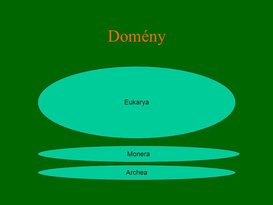 Domény Eukarya Monera Archea