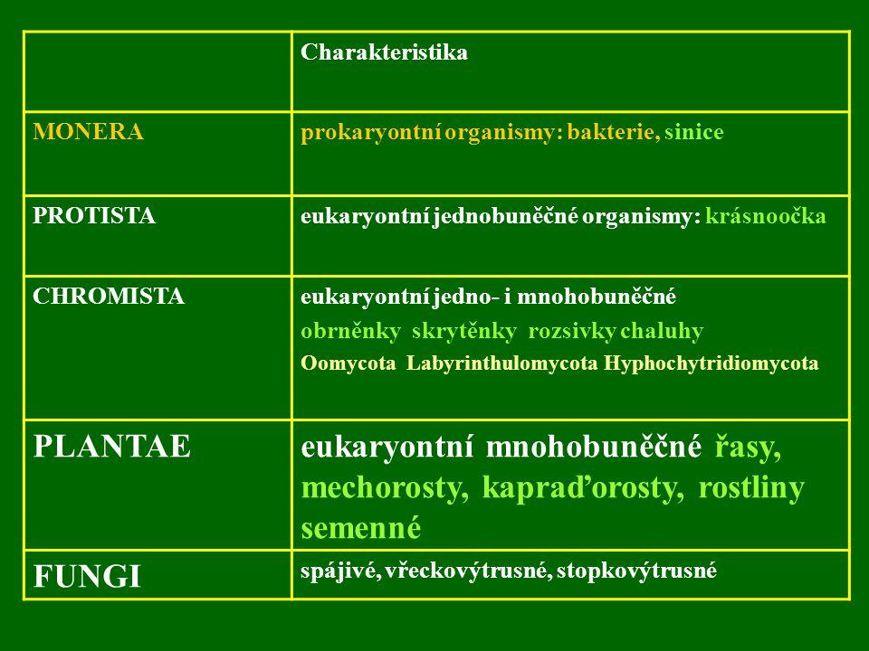 Charakteristika MONERA. prokaryontní organismy: bakterie, sinice. PROTISTA. eukaryontní jednobuněčné organismy: krásnoočka.