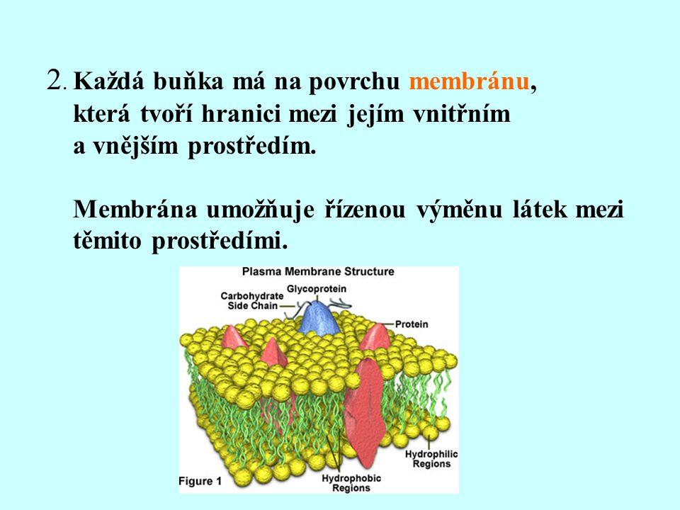 2. Každá buňka má na povrchu membránu,