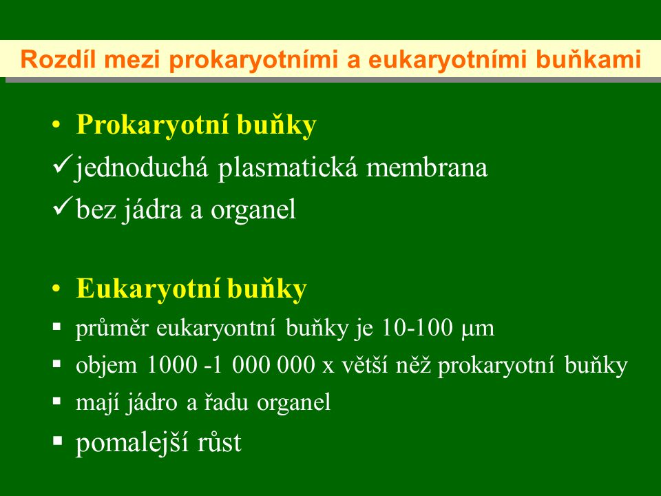 Rozdíl mezi prokaryotními a eukaryotními buňkami