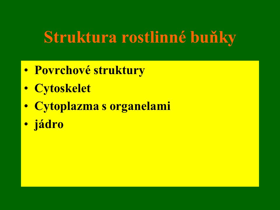 Struktura rostlinné buňky
