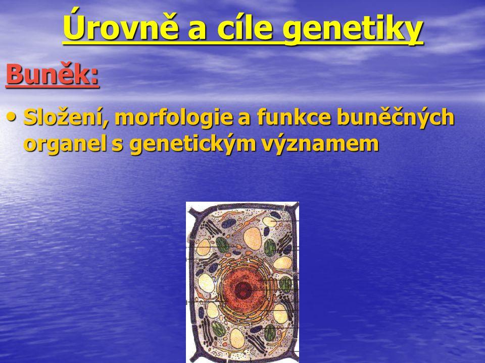Úrovně a cíle genetiky Buněk: