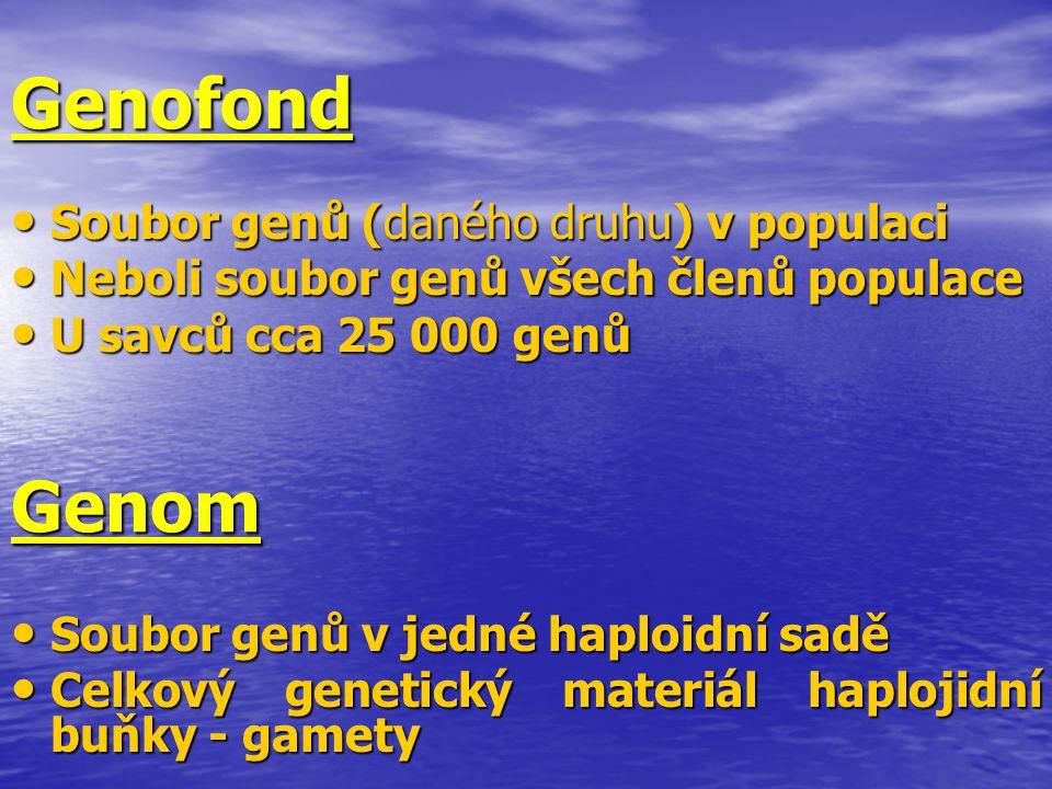 Genofond Genom Soubor genů (daného druhu) v populaci
