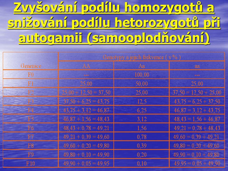 Zvyšování podílu homozygotů a snižování podílu hetorozygotů při autogamii (samooplodňování)