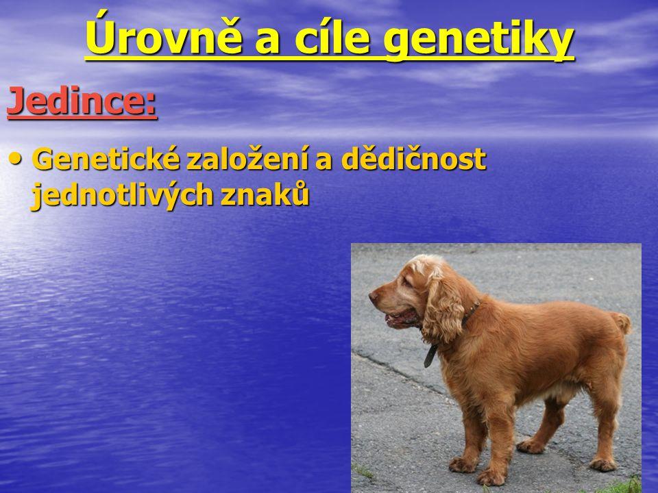 Úrovně a cíle genetiky Jedince: