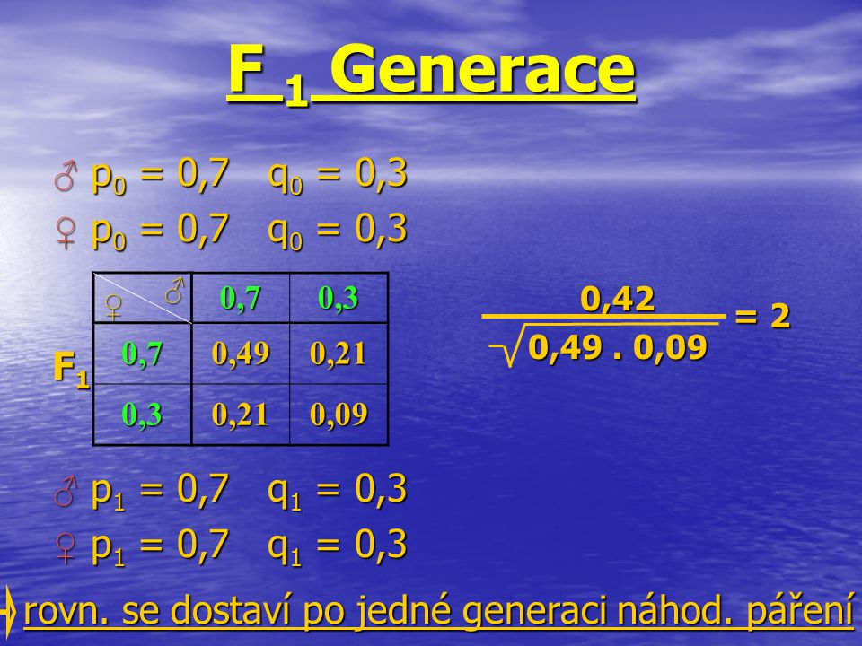 F 1 Generace ♂ p0 = 0,7 q0 = 0,3 ♀ p0 = 0,7 q0 = 0,3 F1