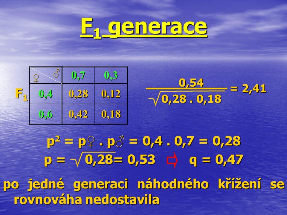F1 generace F1 p2 = p♀ . p♂ = 0,4 . 0,7 = 0,28 p = 0,28= 0,53 q = 0,47