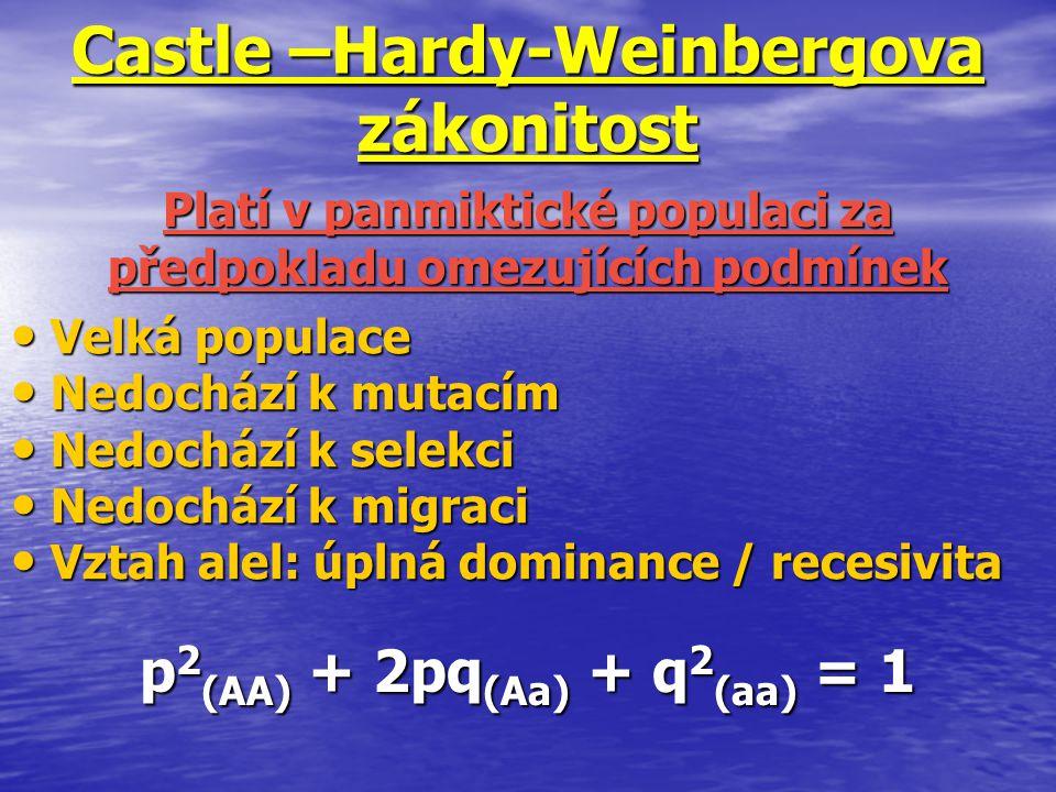 Castle –Hardy-Weinbergova zákonitost