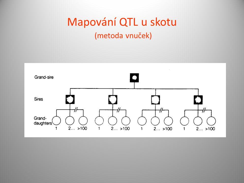 Mapování QTL u skotu (metoda vnuček)