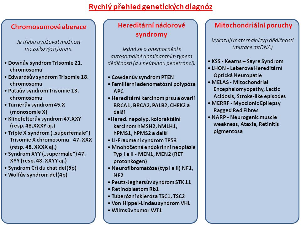 Rychlý přehled genetických diagnóz Hereditární nádorové syndromy