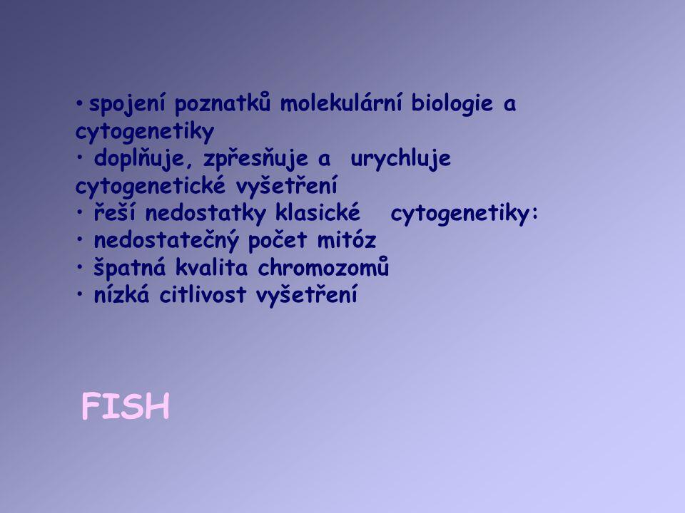 FISH spojení poznatků molekulární biologie a cytogenetiky