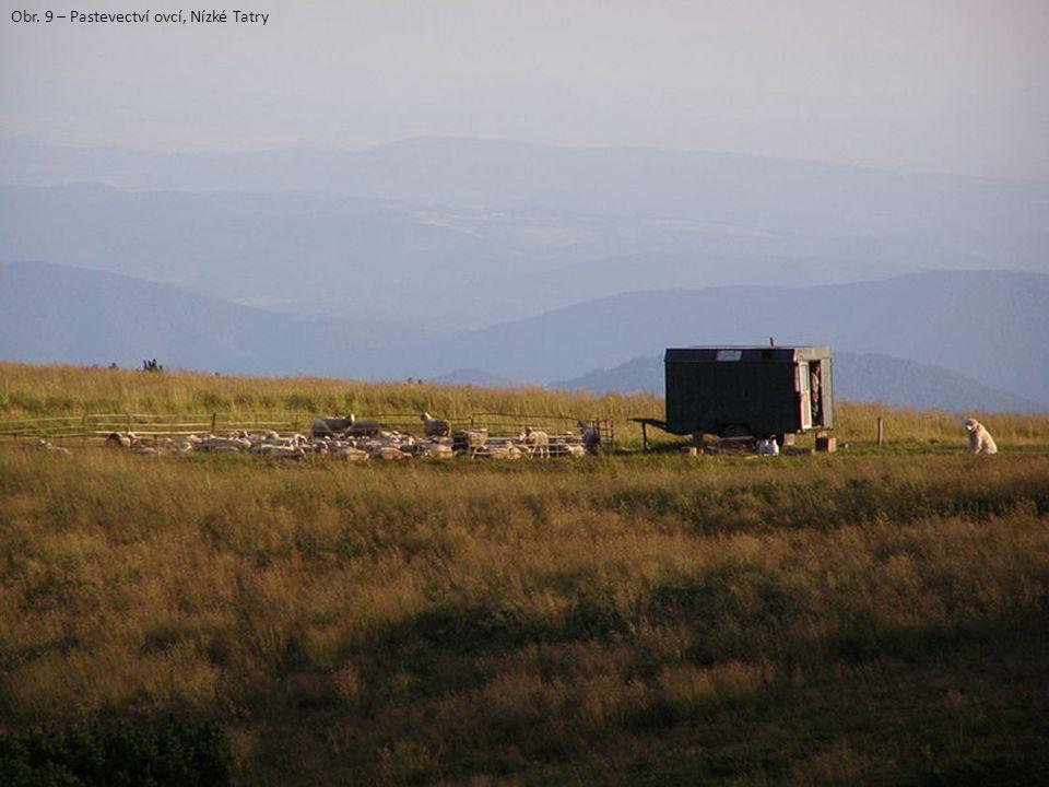 Obr. 9 – Pastevectví ovcí, Nízké Tatry