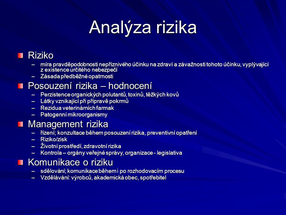 Analýza rizika Riziko Posouzení rizika – hodnocení Management rizika