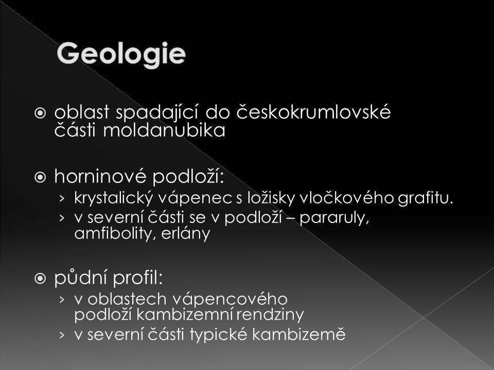 Geologie oblast spadající do českokrumlovské části moldanubika
