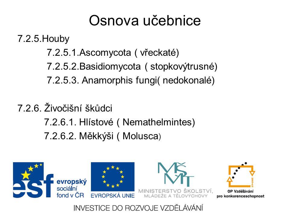 Osnova učebnice 7.2.5.Houby 7.2.5.1.Ascomycota ( vřeckaté)