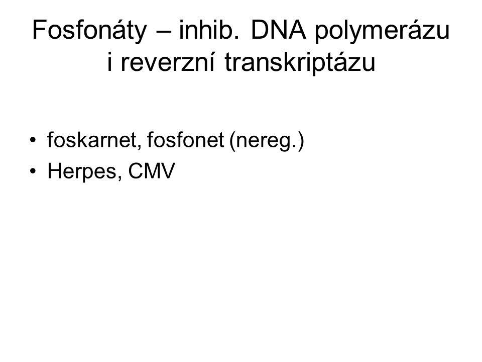 Fosfonáty – inhib. DNA polymerázu i reverzní transkriptázu