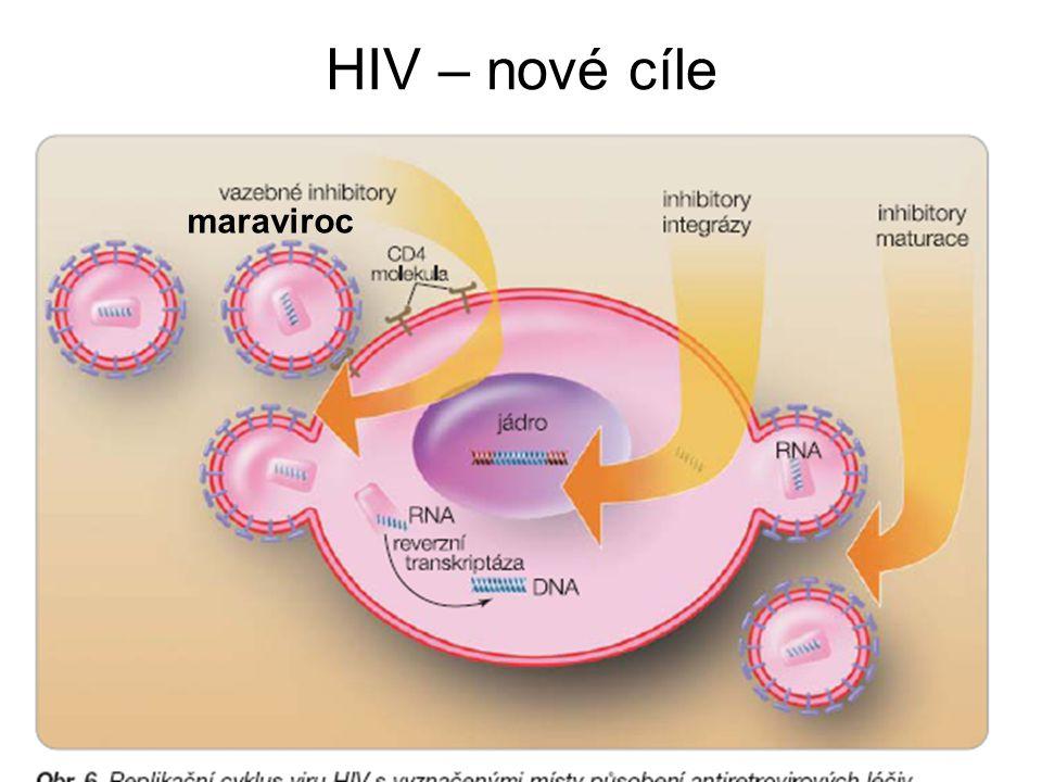 HIV – nové cíle maraviroc
