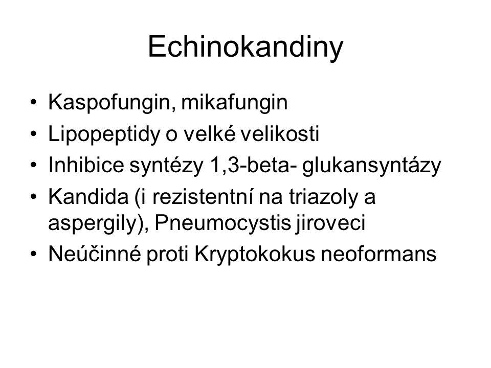 Echinokandiny Kaspofungin, mikafungin Lipopeptidy o velké velikosti
