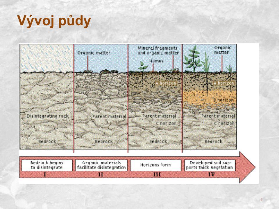 Vývoj půdy