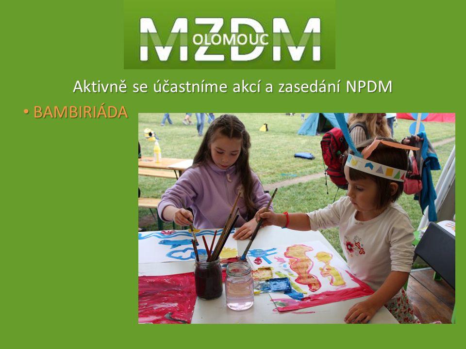 Aktivně se účastníme akcí a zasedání NPDM