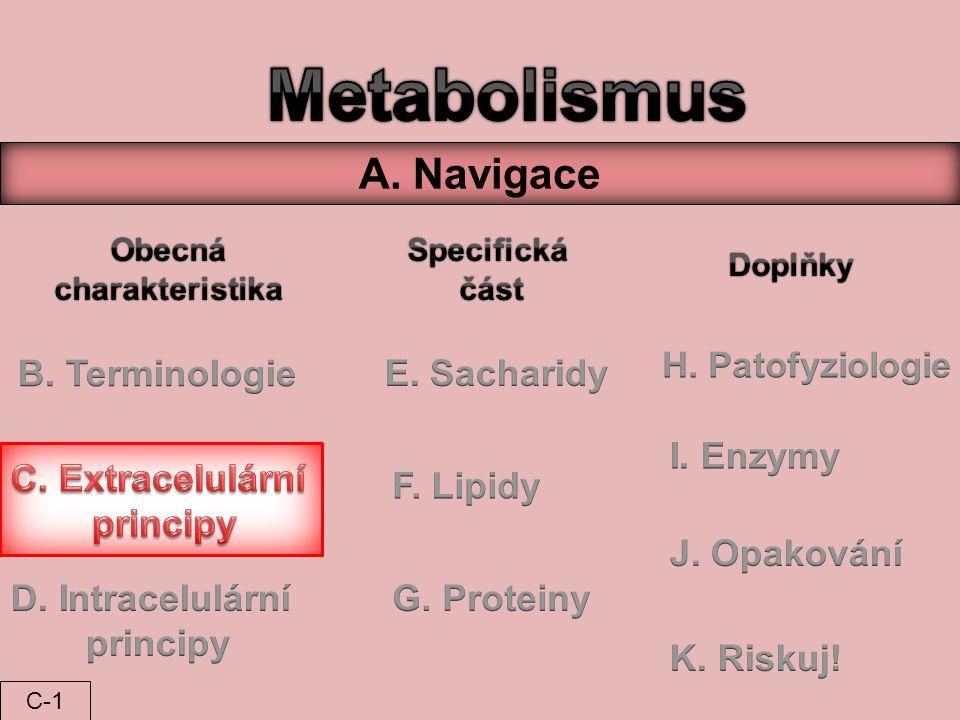 Metabolismus A. Navigace B. Terminologie E. Sacharidy I. Enzymy
