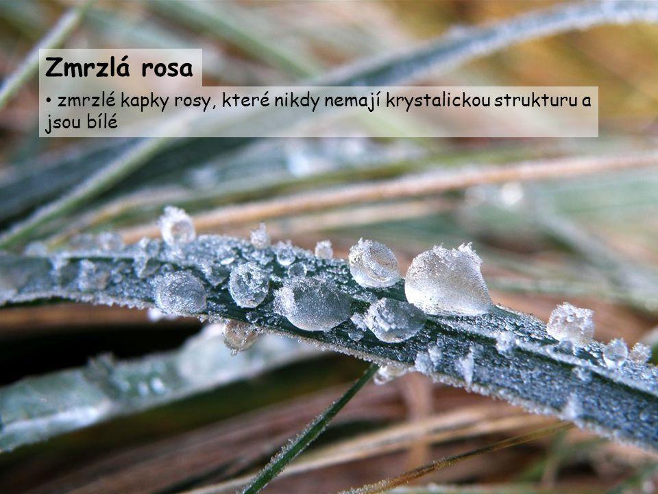 Zmrzlá rosa zmrzlé kapky rosy, které nikdy nemají krystalickou strukturu a jsou bílé