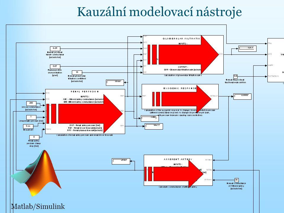 Kauzální modelovací nástroje