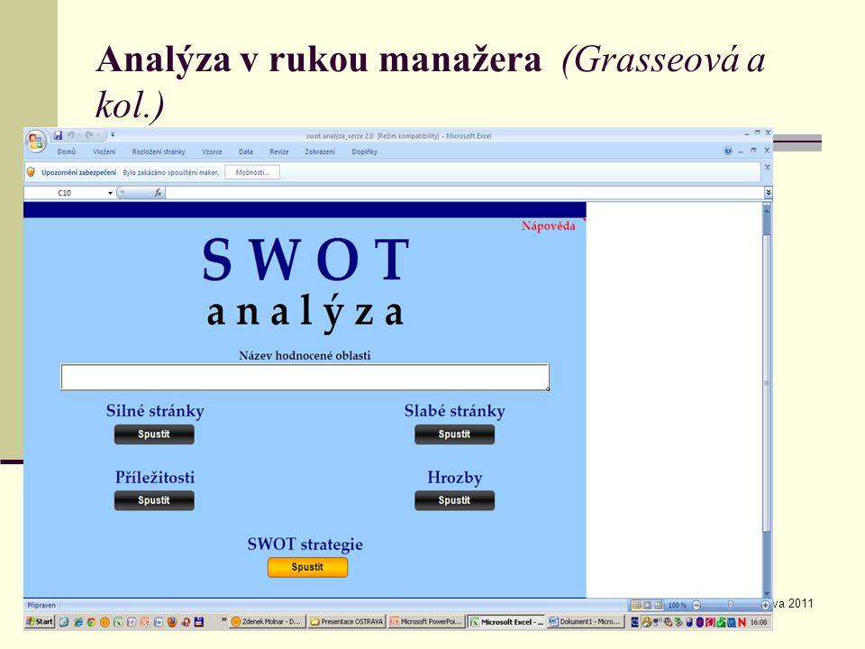 Analýza v rukou manažera (Grasseová a kol.)