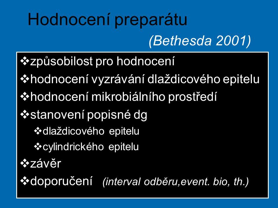 Hodnocení preparátu (Bethesda 2001)