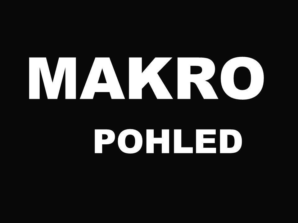 MAKRO POHLED