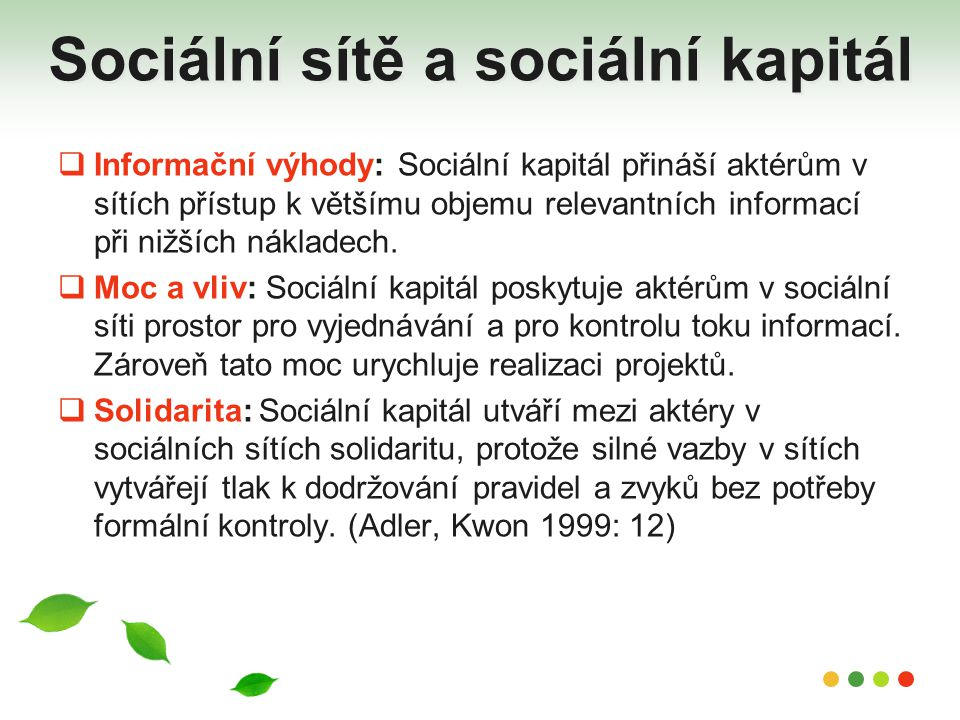 Sociální sítě a sociální kapitál
