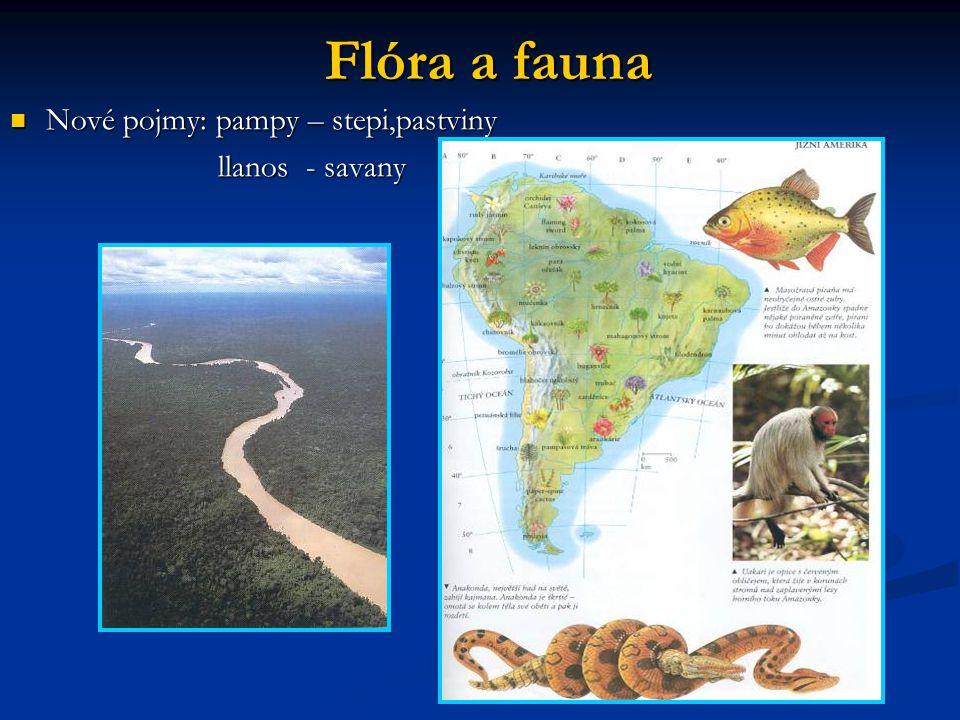 Flóra a fauna Nové pojmy: pampy – stepi,pastviny llanos - savany
