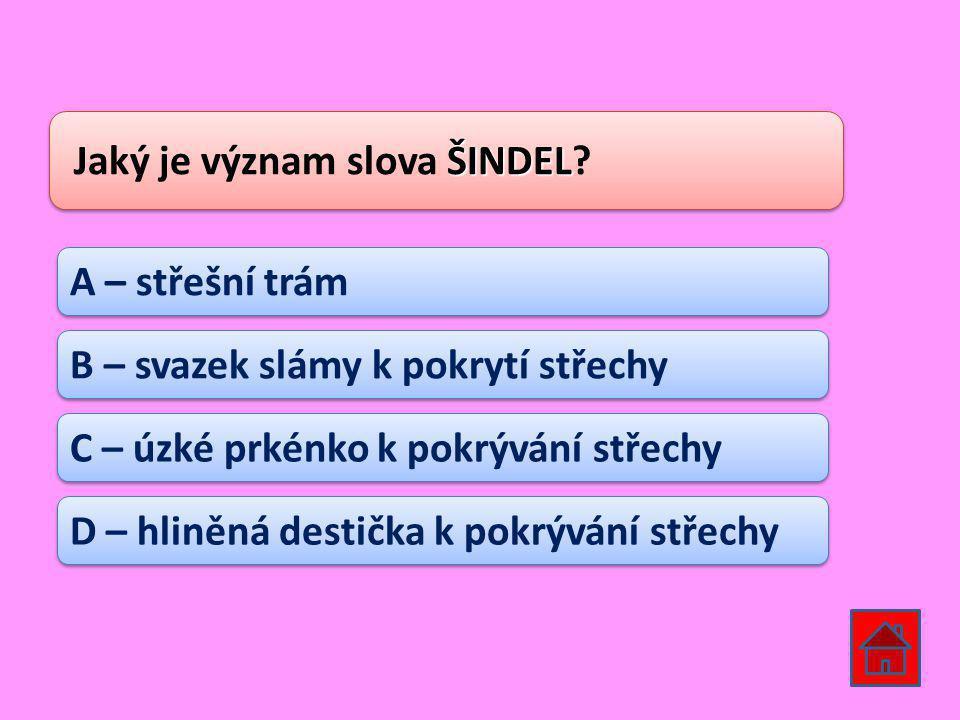 Jaký je význam slova ŠINDEL