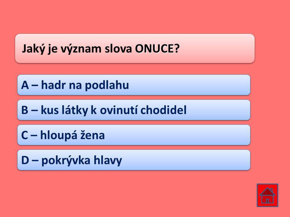 Jaký je význam slova ONUCE