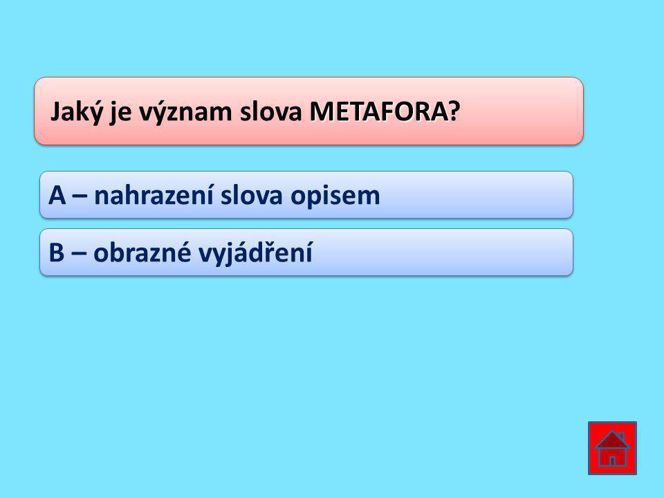 Jaký je význam slova METAFORA