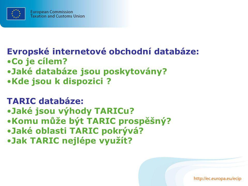 Evropské internetové obchodní databáze: Co je cílem