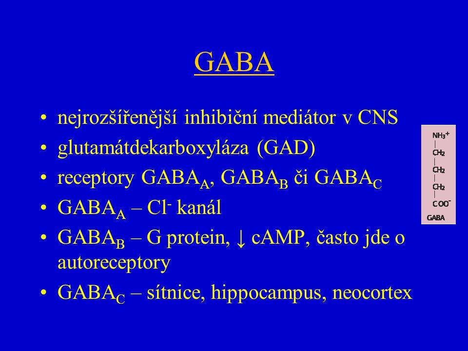 GABA nejrozšířenější inhibiční mediátor v CNS