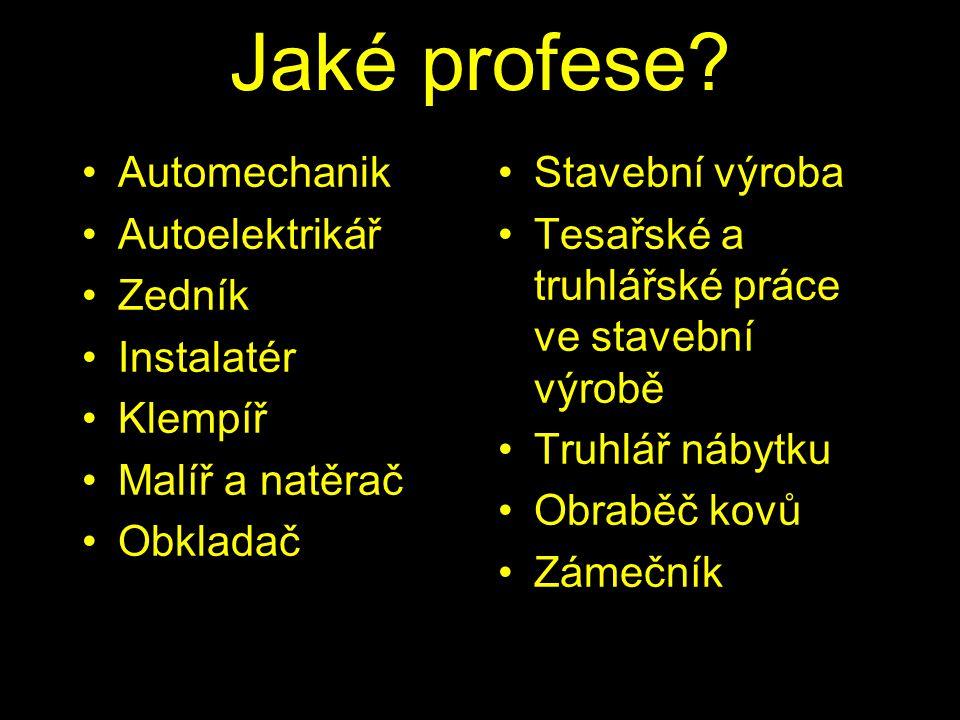 Jaké profese Automechanik Autoelektrikář Zedník Instalatér Klempíř