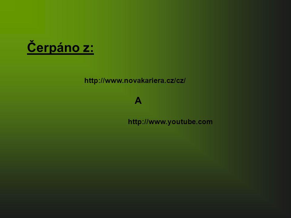 Čerpáno z: http://www.novakariera.cz/cz/ A http://www.youtube.com